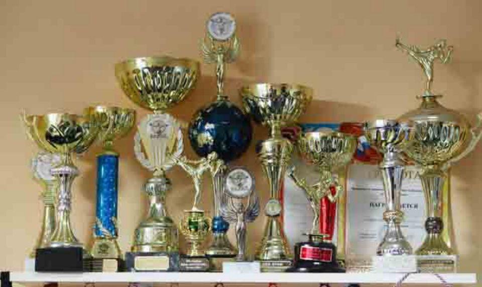 Кубки, медали и награды по тайскому боксу тренера клуба Карягина Вадима Викторовича
